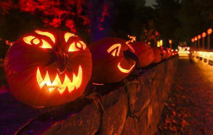 pumpkin glow walk